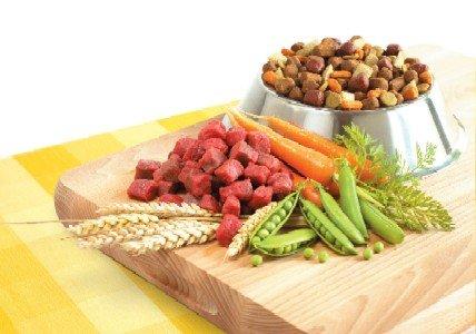 Egészséges kutyák etetése házilag összeállított alapanyagokból